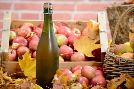 cider: Cider bottle surrounded by red apples on autumn leaves