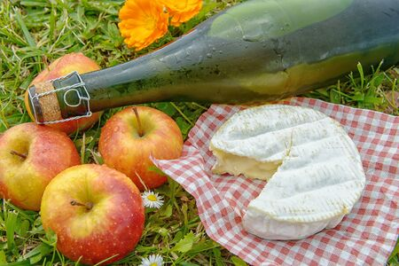 several apples with cider and camembert in the grass Foto de archivo