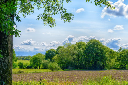 french countryside: a french countryside with foliage Stock Photo
