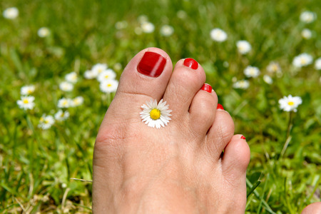 woman resting: the woman foot with red nails on grass background