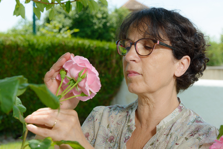 smelling: a mature woman smelling the rose of her garden Stock Photo