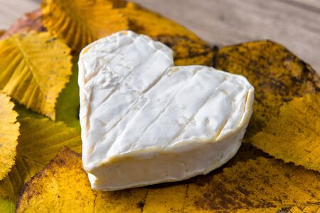 a French Neufchatel cheese shaped heart on autumn leaves