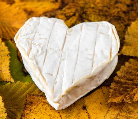 프랑스 Neufchatel 치즈 모양의 심장에 단풍 스톡 콘텐츠