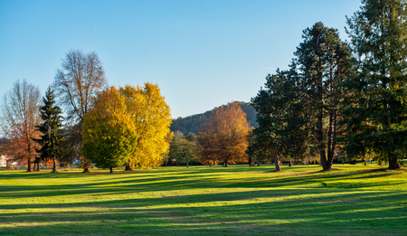 A green golf field and blue sky in autumn