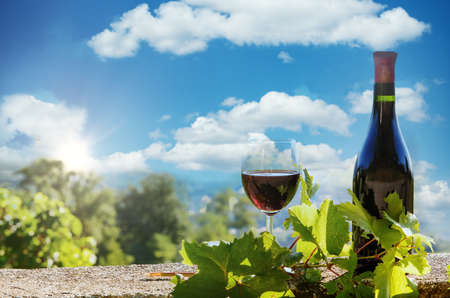 a bottle and a glass of red wine, outdoors Foto de archivo