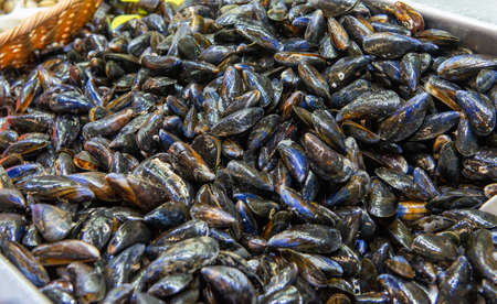 a piles of mussels, Seafood market