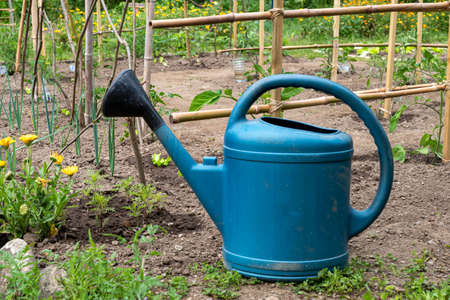 a plastic watering can in the garden