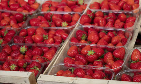 organic strawberries on the market, in France