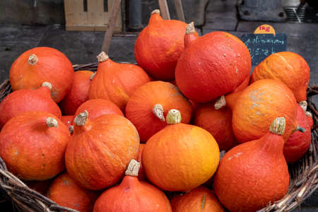 delicious organic pumpkins on the french marketplace