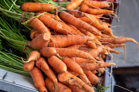 raw organic carrots on the french marketplace