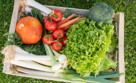 seasonal vegetables in a wooden crate