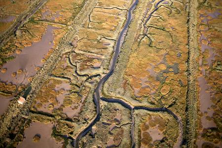 Estran at low tide of old salt marshes on the island of re Reklamní fotografie