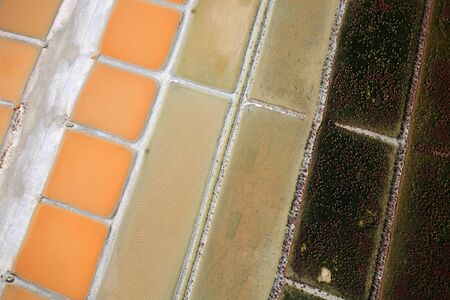 aerial view of a salt marsh on the island of Re