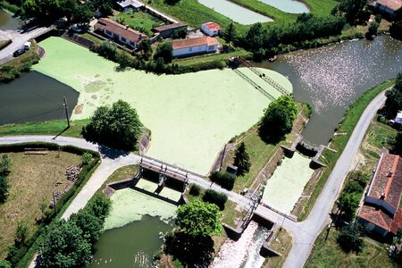 Aerial view of the duckweed dam behind the cliff on the Niortaise Sèvres Stock Photo