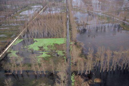 Vista aérea, de, a, pântano poitevin pântano, um, dia, de, inundação Foto de archivo - 94140895