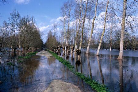 Road blocked by a flood in the Marais Poitevin