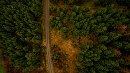 Top view of a forest with a hiking trail, NRW, Germany