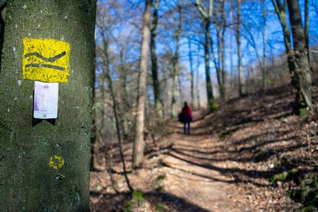 Hiking signs on a small forest path at Hesse, Germany