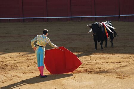 torero: Torero in the bullfighting arena in Spain Stock Photo