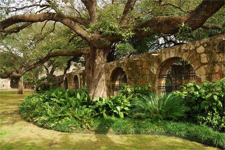 In the garden of Alamo, San Antonio, Texas
