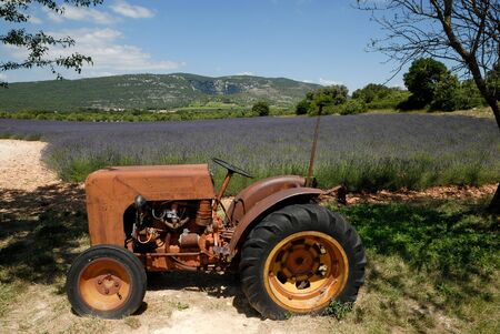 agrar: Old tractor and lavender field in the background in France