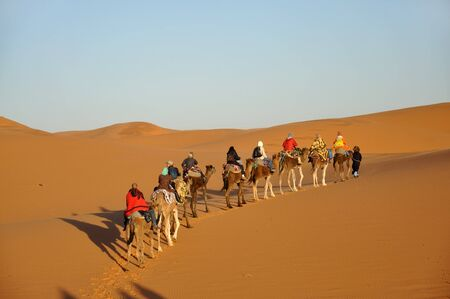 nomad: Camel trip in Sahara desert Merzouga, Morocco, north Africa Stock Photo