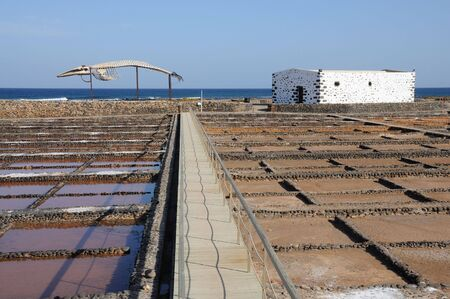 saltmine: Whale skeleton and saline in Caleta de Fuste, Fuerteventura Spain Stock Photo