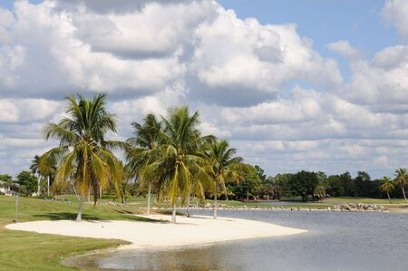 sunshine state: Palm Trees and Lake in Naples, Florida USA