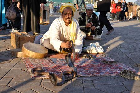 cobra: Serpientes en la Plaza de Djemaa el Fna de Marrakech, Marruecos. Foto tomada en el 22 de noviembre de 2008 Editorial