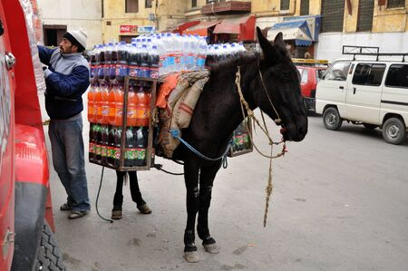 fes: Beverages transport with mule in Fes, Morocco. Photo taken at 23th of November 2008 Editorial