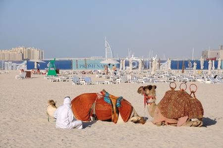 Camellos en la playa en Dubai, Emiratos Árabes Unidos. Foto tomada en 29 de enero de 2010