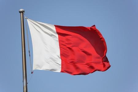 gcc: Flag of Dubai, United Arab Emirates