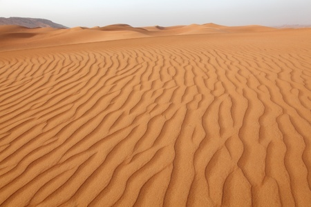 arabic desert: Desert dunes near Dubai, United Arab Emirates