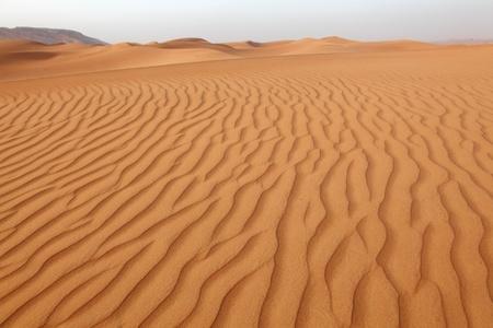 the emirates: Dunas del desierto cerca de Dubai, Emiratos �rabes Unidos Foto de archivo