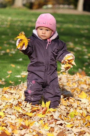Cute toddler in an autumnal park photo