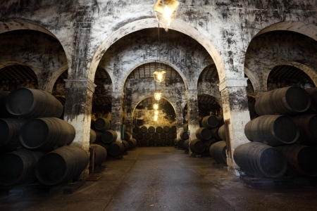 Ancient wine cellar with wooden wine barrels photo