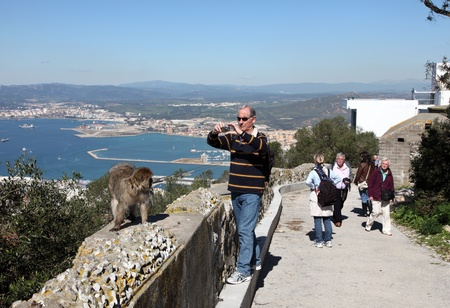 barbary ape: Tourists taking pictures of a barbary macaque at the Gibraltar Cable Car top station