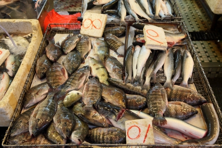 Fish market in Hong Kong Stock Photo - 23484614