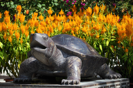 Asian Turtle Statue In A Garden Stock Photo   24051113