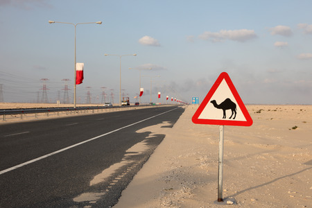 Camel warning sign at the highway in Qatar, Middle East