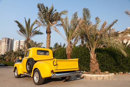 chevy: Classic yellow Chevy pickup truck under the palm trees