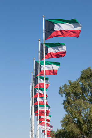 gcc: Row of Kuwait national flags. Middle East, Arabia