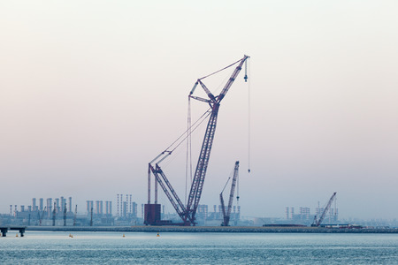 Crane at the Persian Gulf coast in Dubai, United Arab Emirates