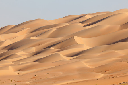 Sand dunes at the Empty Quarter desert in the Emirate of Abu Dhabi, United Arab Emirates photo