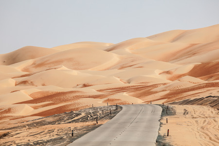 desert oasis: Road through the desert in Liwa Oasis area, Emirate of Abu Dhabi, Untied Arab Emirates