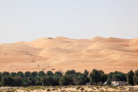 united arab emirate: Dunes in the Empty Quarter desert. Emirate of Abu Dhabi, United Arab Emirates Stock Photo