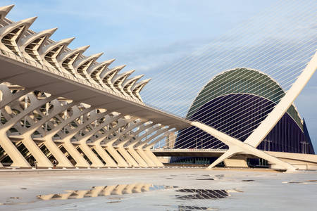 sciences: VALENCIA, SPAIN - MAY 24: Prince Philip Science Museumand the Agora in the City of Arts and Sciences in Valencia. May 24, 2015 in Valencia, Spain