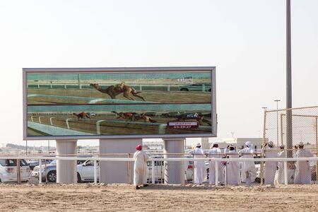 running camel: DOHA, QATAR - NOV 21: Qatari camel owners watching the race at Al Shahaniya camel Racetrack in Qatar. November 21, 2015 in Doha, Qatar, Middle East
