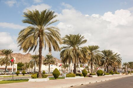 muttrah: Street with palm trees in the old town of Muttrah. Muscat, Oman, Middle East