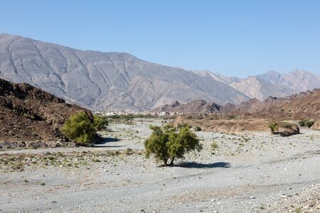 mountainscape: Dry valley (Wadi) in the Hajar mountains. Sultanate of Oman, Middle East